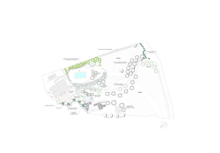 Progetto per sistemazione a verde a Fiesole, Firenze
